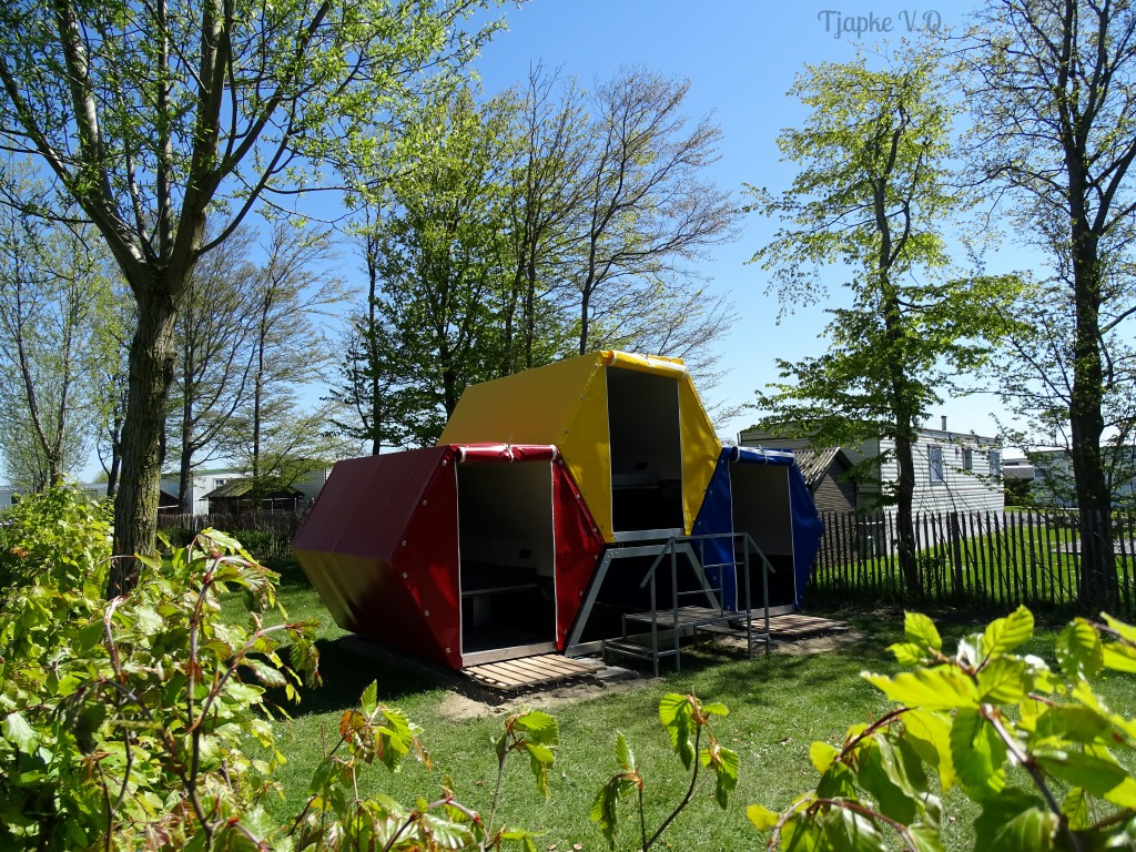 Camping Bee