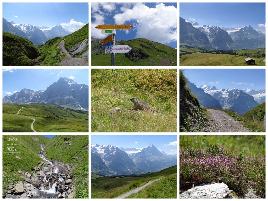 First - Grosse Scheidegg