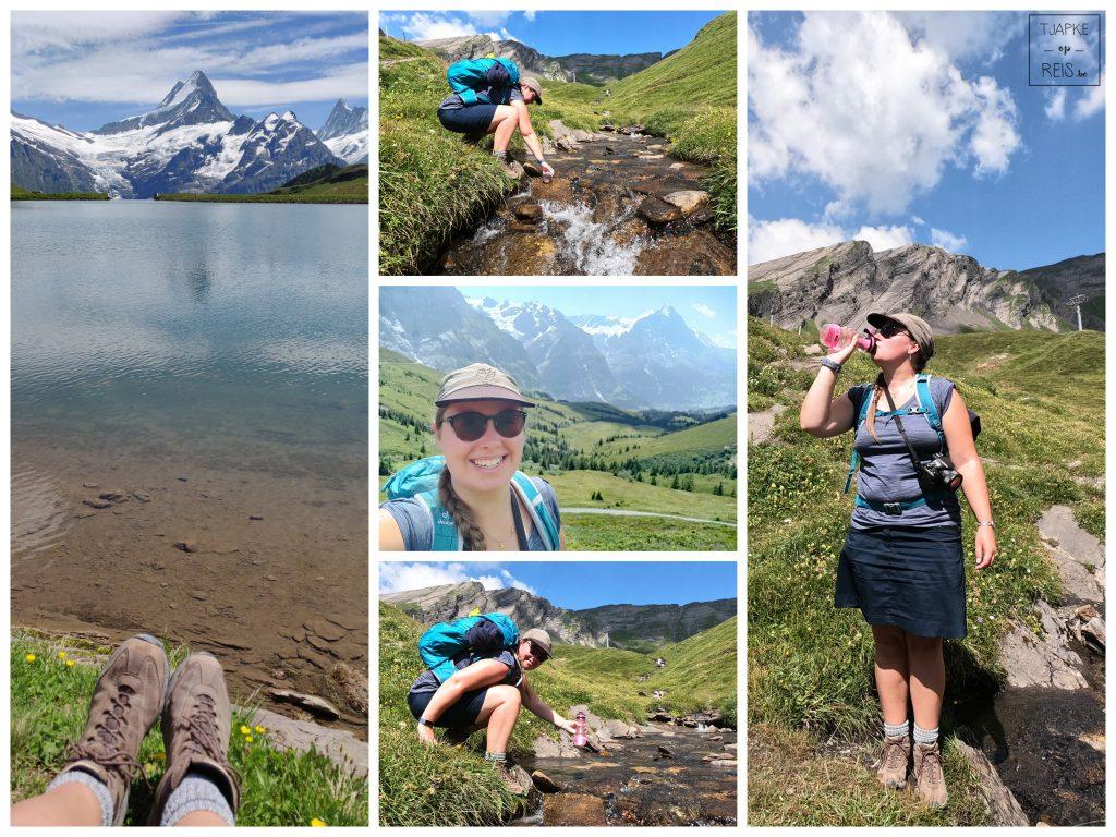 wandelen Jungfrauregio